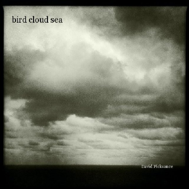 bird cloud sea