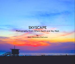 Skyscape book cover