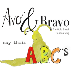 Avo and Bravo book cover