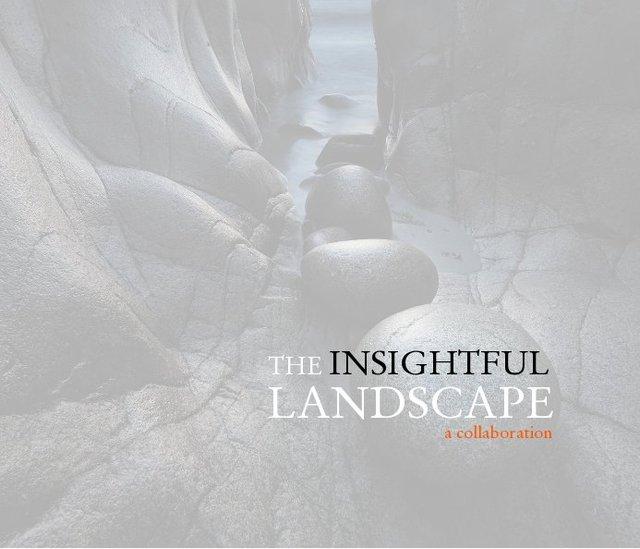 The Insightful Landscape