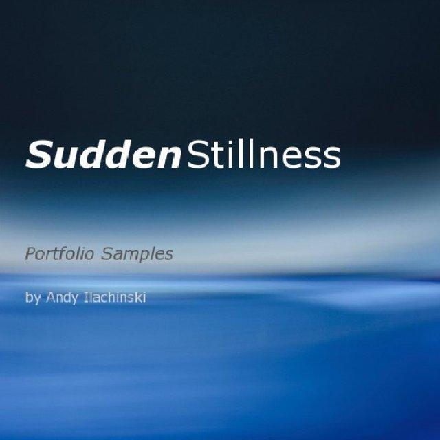 Sudden Stillness