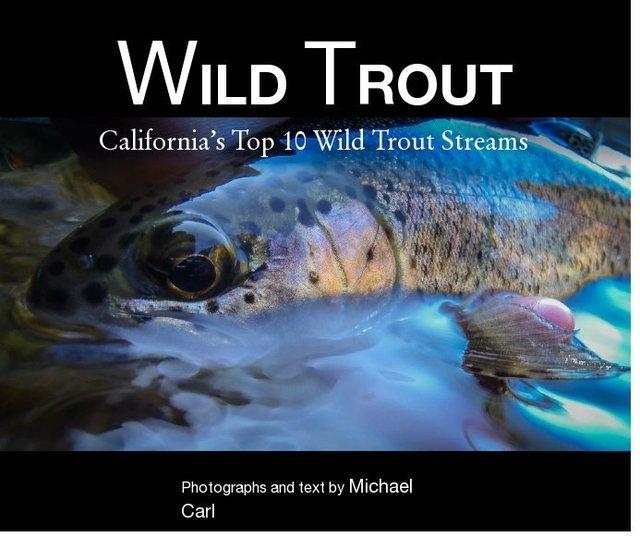 Wild Trout