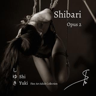 Shibari - Opus 2 book cover