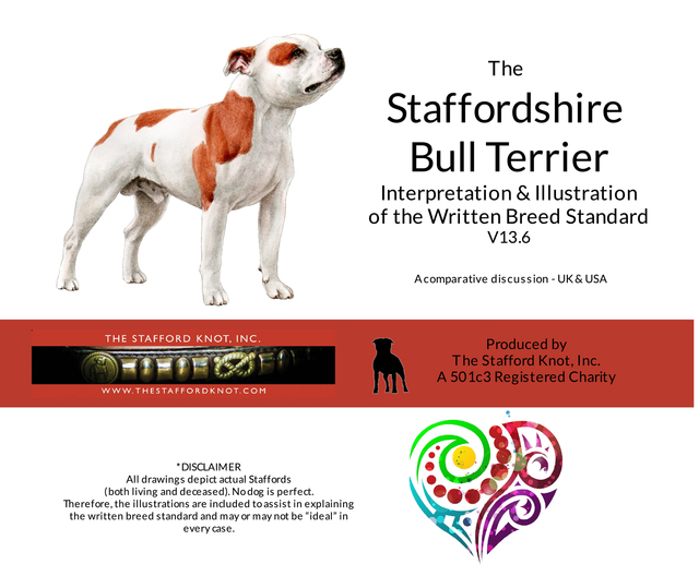 The Staffordshire Bull Terrier Interpretation & Illustration of the Written Breed Standard v 13.6