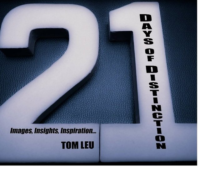 21 Days of Distinction