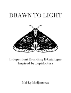 Drawn to Light book cover