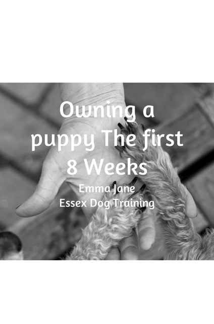 Owning A Puppy The first 8 weeks