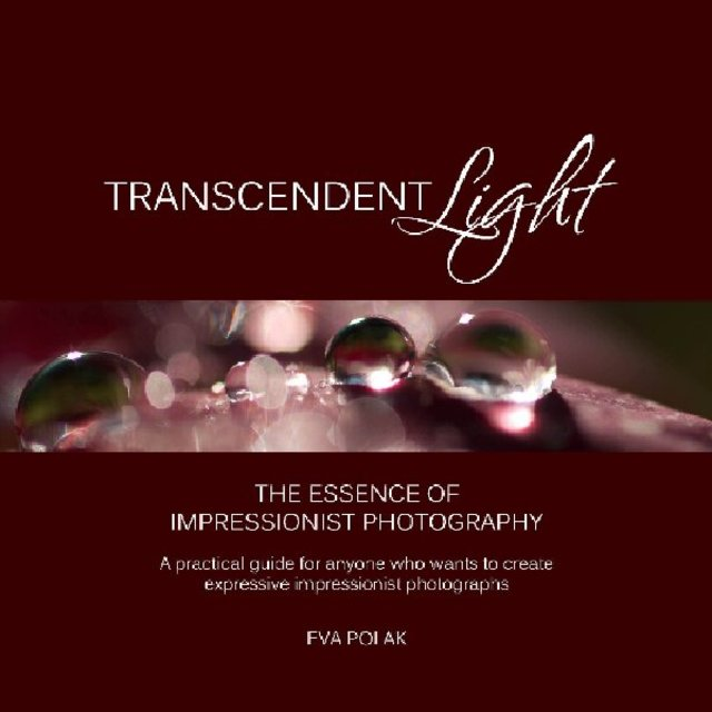 Transcendent Light
