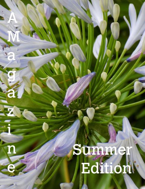 AMagazine Summer Edition