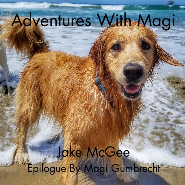 Adventures With Magi