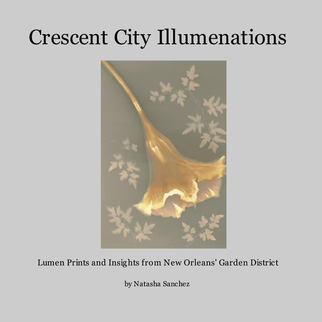 Crescent City Illumenations