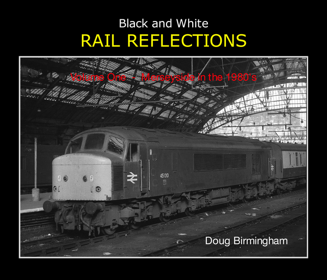 Black and White RAIL REFLECTIONS