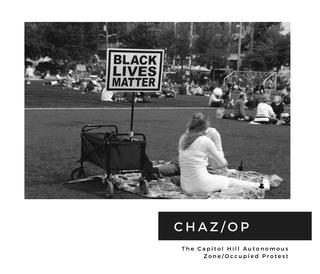 The Capitol Hill Autonomous Zone/ Occupied Protest book cover