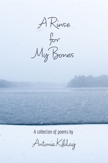 A Rinse for My Bones book cover