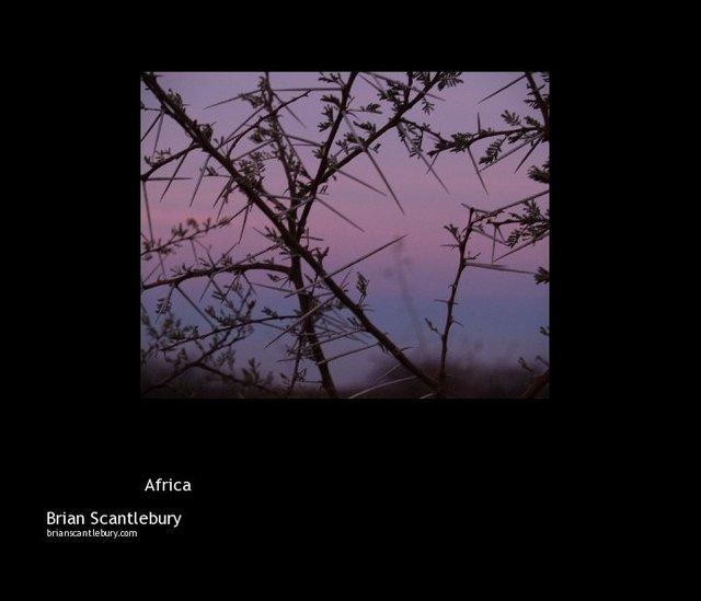 \ Africa