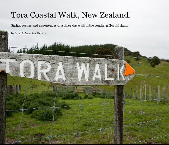 Tora Coastal Walk, New Zealand.