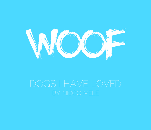 Dogs I Have Loved