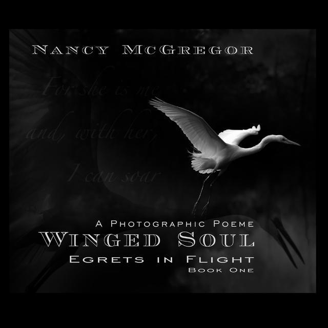 Winged Soul - Egrets in Flight