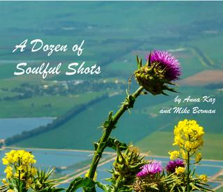 A Dozen of Soulful Shots - ebook book cover