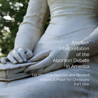 Another Interpretation of the Abortion Debate in America book cover