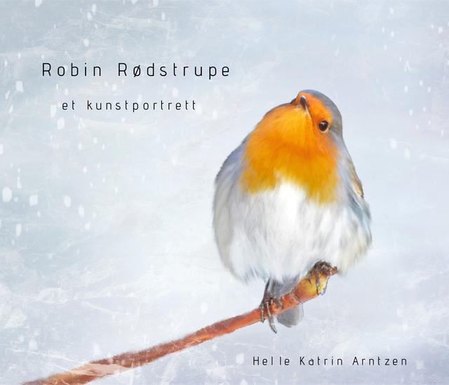 Robin Rødstrupe