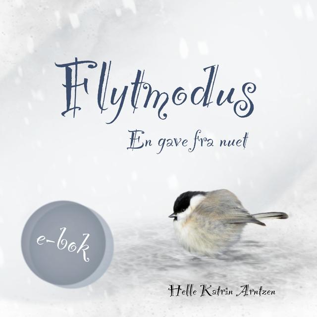 Flytmodus