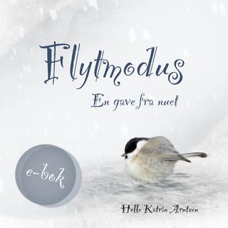 Flytmodus book cover