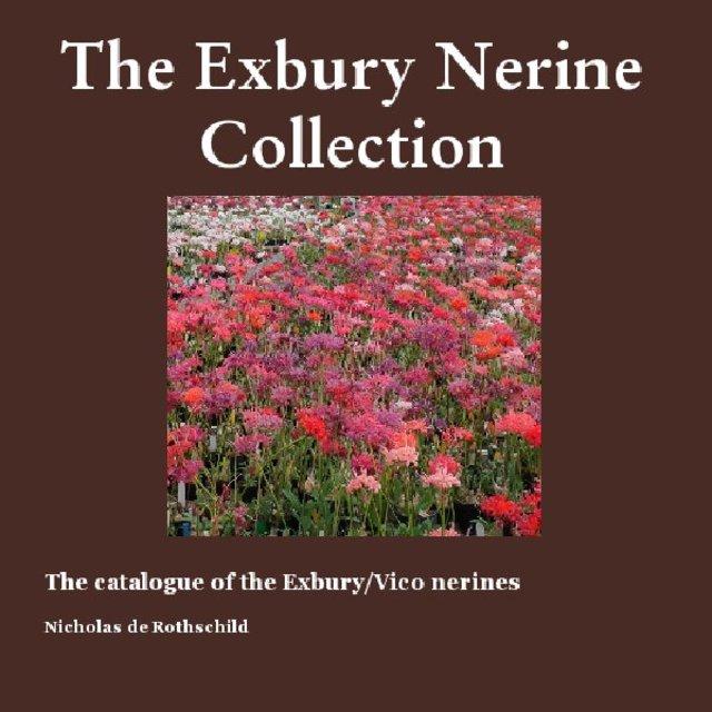 The Exbury Nerine Collection