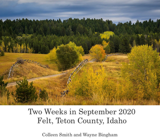 Two Weeks in September 2020 book cover