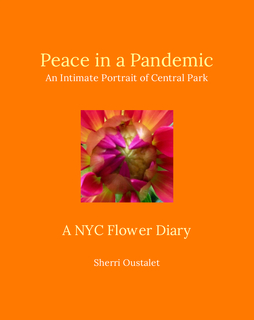 Peace in a Pandemic book cover