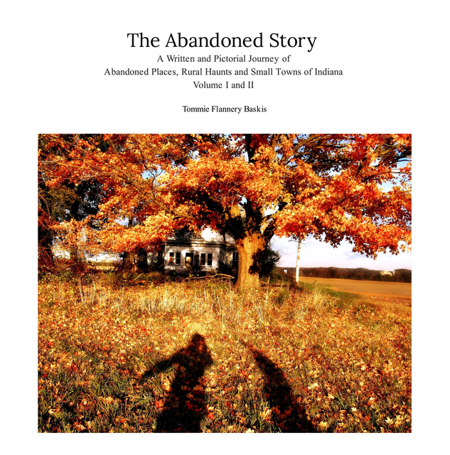 The Abandoned Story