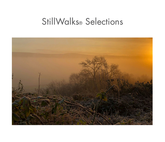 StillWalks Selections 1