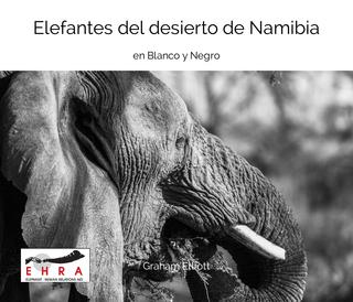 Elefantes del desierto de Namibia book cover