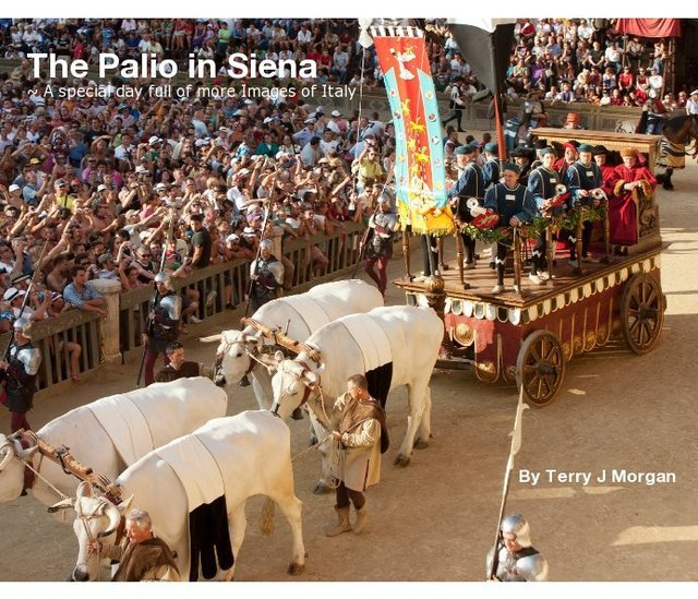 The Palio in Siena ~