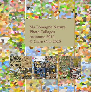 Ma Lomagne Nature Automne Photo-collages 2019 book cover