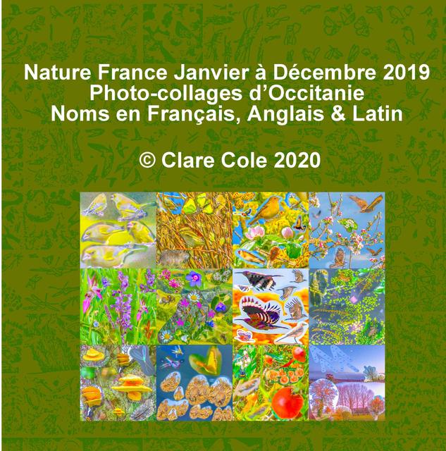 Nature France Janvier à Decembre 2019 Quelques Photocollages
