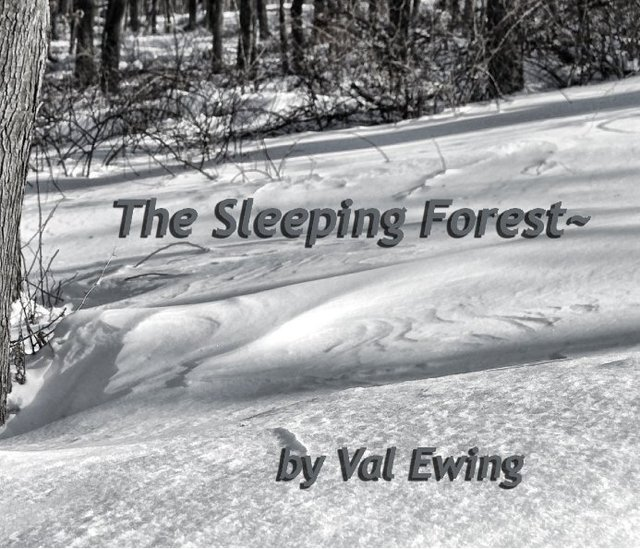 The Sleeping Forest~