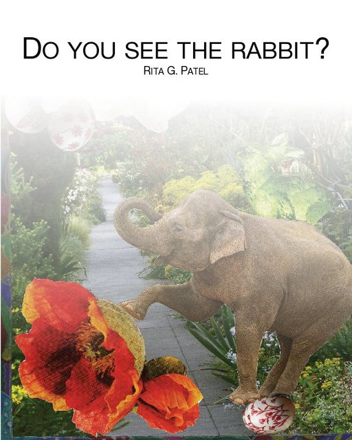 Do you see the rabbit?