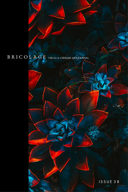 Bricolage Issue 38