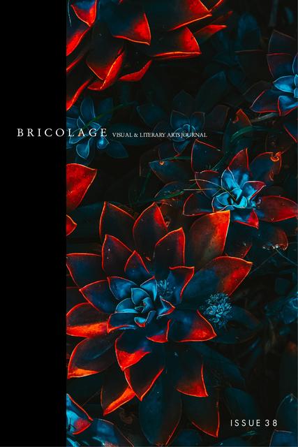 Bricolage Issue 38