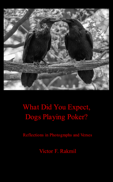 What Were You Expecting, Dogs Playing Poker?