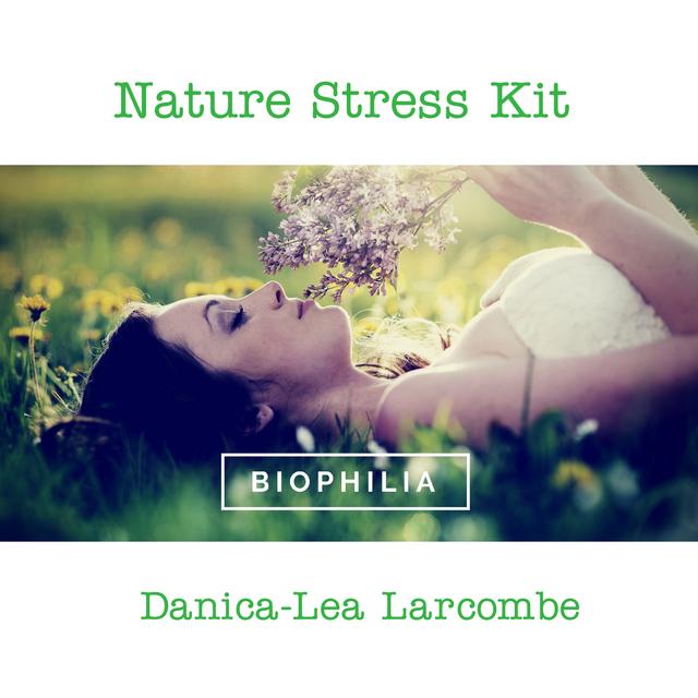 Nature Stress Kit