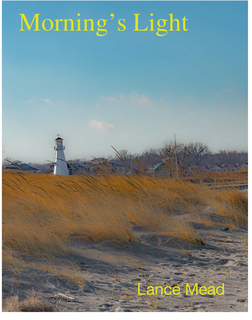 Morning's Light book cover