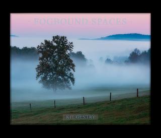 Fogbound Spaces book cover