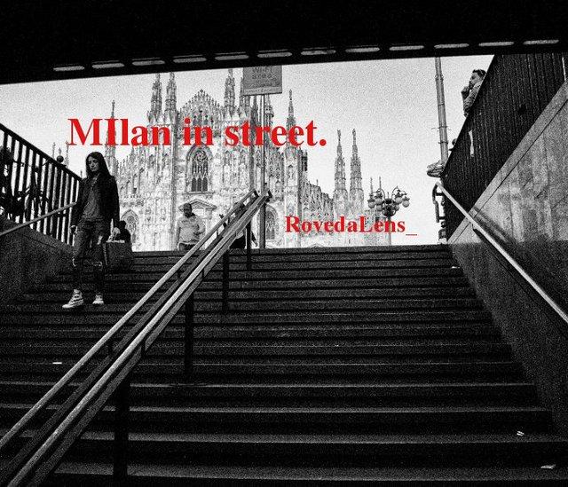 Milan in Street-
