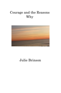 Courage and the Reasons Why book cover
