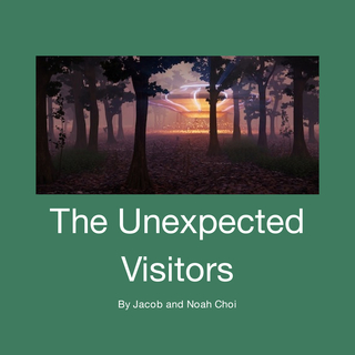 The Unexpected Visitors book cover