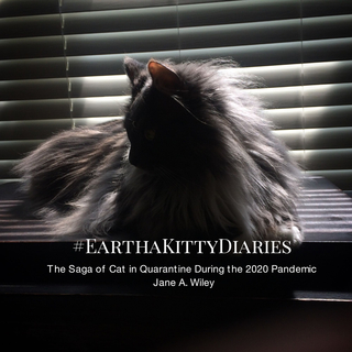 EarthaKittyDiaries book cover