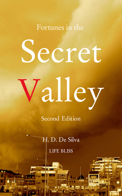 Fortunes in the Secret Valley