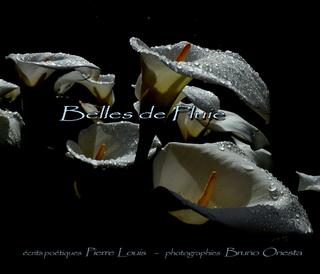 Belles de Pluie book cover